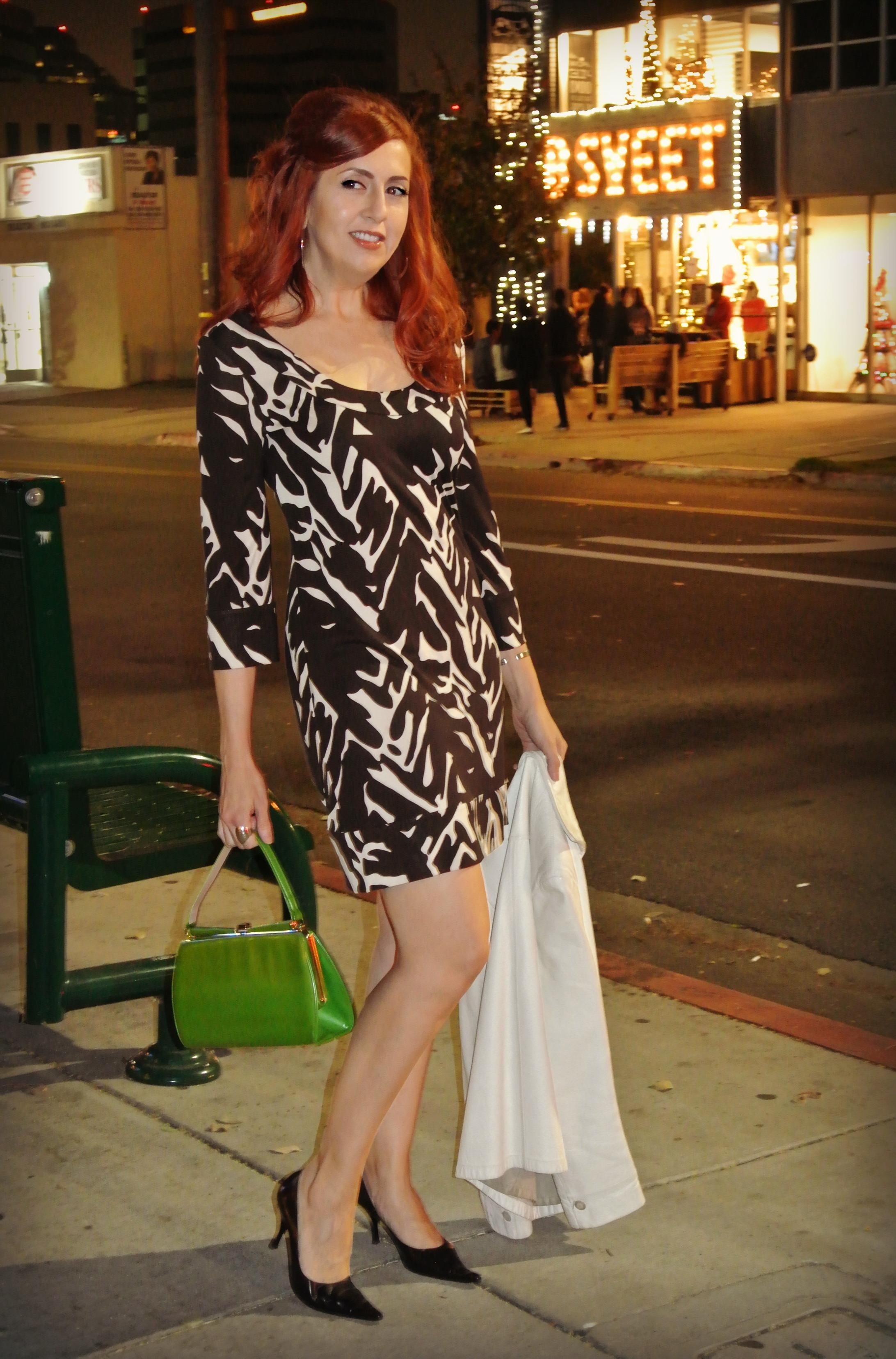 Diane Von Furstenberg Dress DVF n Little Osaka, Los Angeles